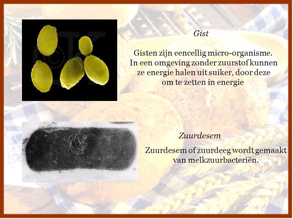 Gist Zuurdesem Gisten zijn eencellig micro-organisme. In een omgeving zonder zuurstof kunnen ze energie halen uit suiker, door deze om te zetten in en