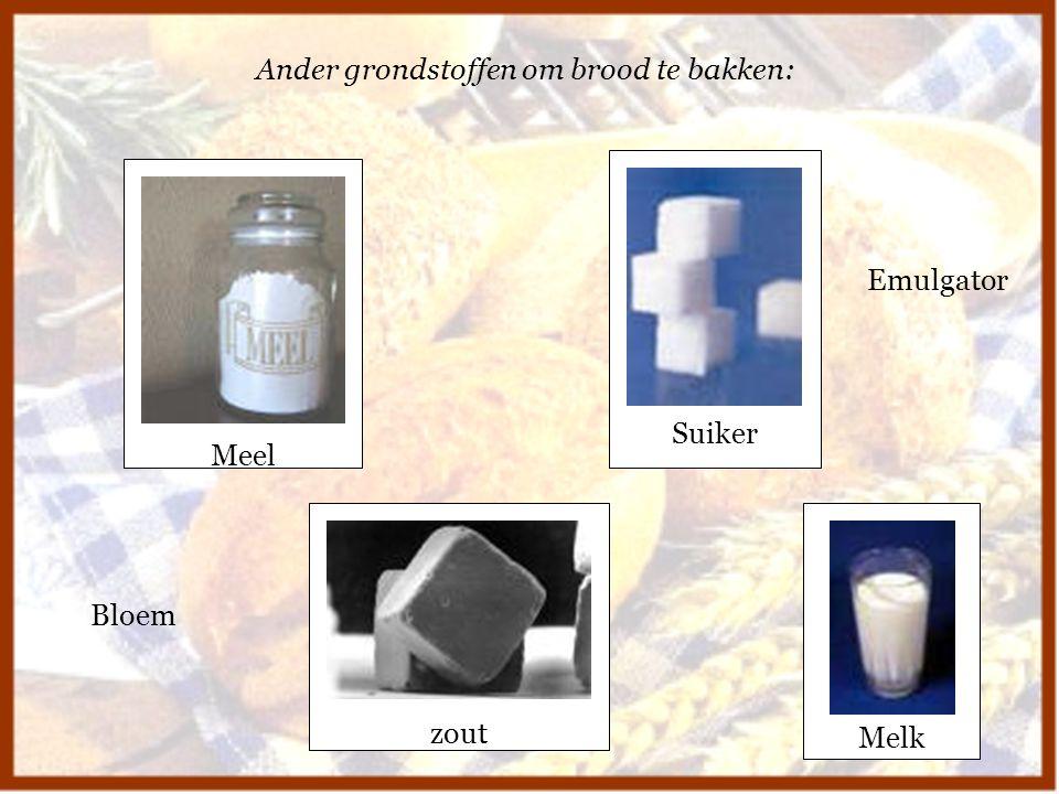 Ander grondstoffen om brood te bakken: Meel Suiker zout Melk Bloem Emulgator