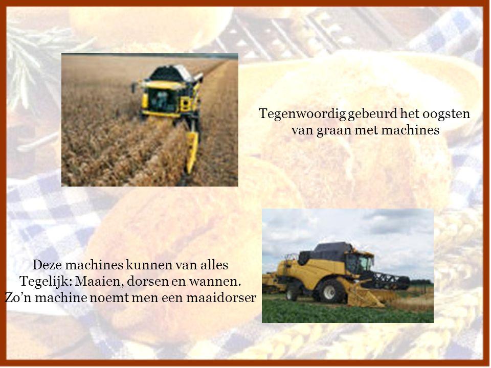 Tegenwoordig gebeurd het oogsten van graan met machines Deze machines kunnen van alles Tegelijk: Maaien, dorsen en wannen. Zo'n machine noemt men een