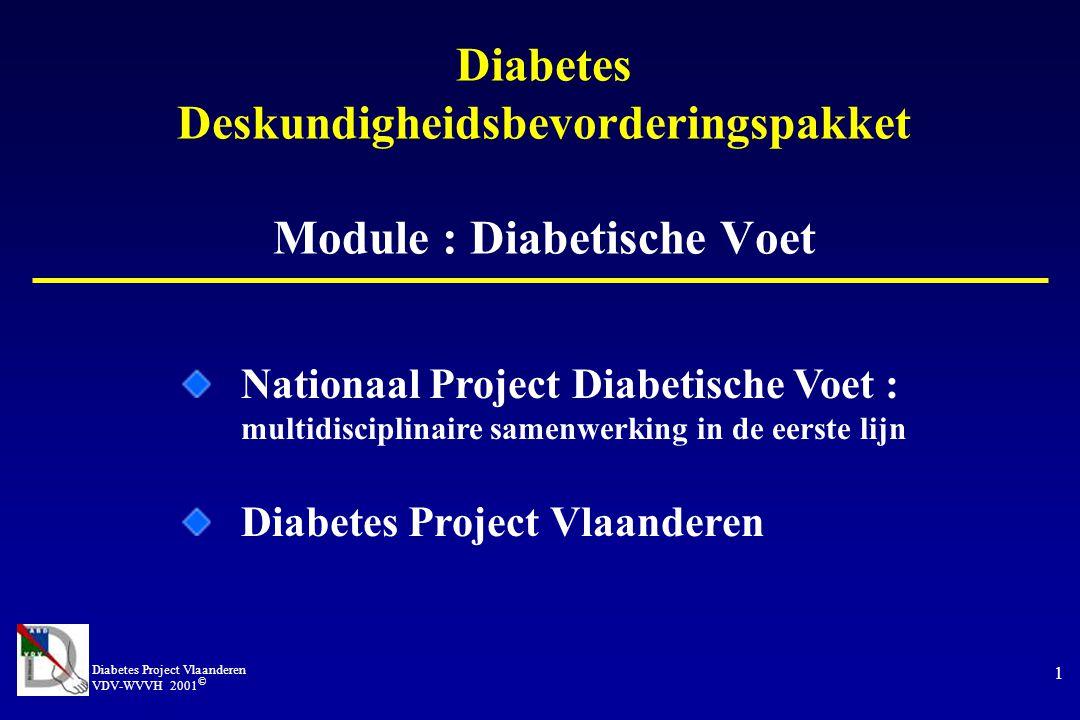 Diabetes Project Vlaanderen VDV-WVVH 2001 © 1 Diabetes Deskundigheidsbevorderingspakket Module : Diabetische Voet Nationaal Project Diabetische Voet : multidisciplinaire samenwerking in de eerste lijn Diabetes Project Vlaanderen