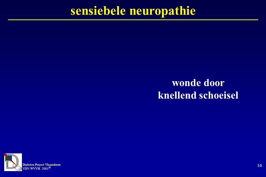 Diabetes Project Vlaanderen VDV-WVVH 2001 © 16 sensiebele neuropathie wonde door knellend schoeisel