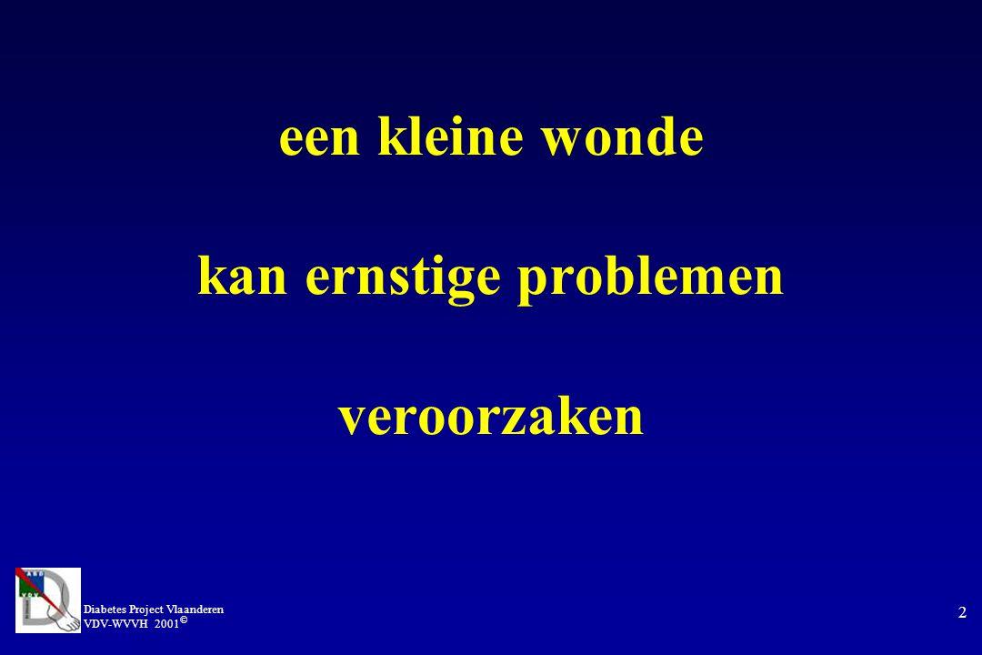 Diabetes Project Vlaanderen VDV-WVVH 2001 © 13 late verwijzing Apelqvist, Sweden gemiddeld 188 dagen tussen ontstaan van ulcus en verwijzing naar voetkliniek indien verwijzing binnen de 25 dagen : 79 % minder amputaties