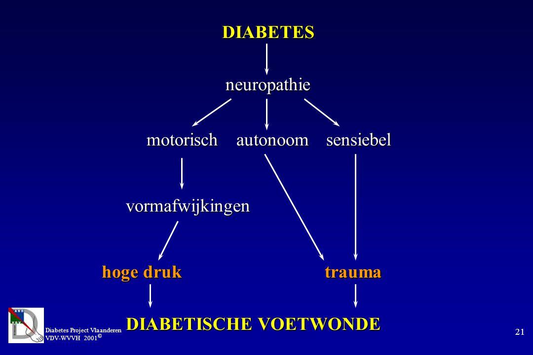 Diabetes Project Vlaanderen VDV-WVVH 2001 © 21 DIABETES neuropathie neuropathie motorischautonoomsensiebel vormafwijkingen vormafwijkingen hoge druk trauma DIABETISCHE VOETWONDE DIABETISCHE VOETWONDE