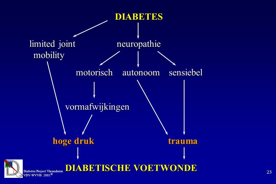 Diabetes Project Vlaanderen VDV-WVVH 2001 © 23 DIABETES limited joint neuropathie mobility motorischautonoomsensiebel vormafwijkingen vormafwijkingen hoge druk trauma DIABETISCHE VOETWONDE DIABETISCHE VOETWONDE