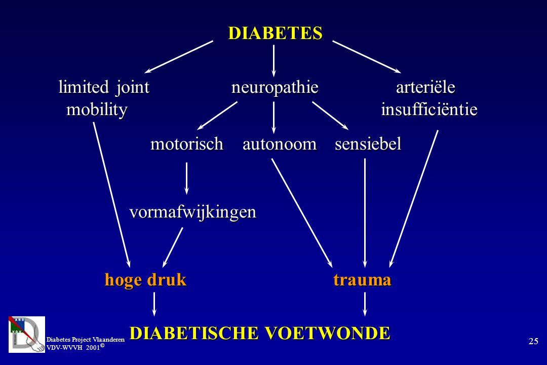 Diabetes Project Vlaanderen VDV-WVVH 2001 © 25 DIABETES limited joint neuropathiearteriële mobility insufficiëntie motorischautonoomsensiebel vormafwijkingen vormafwijkingen hoge druk trauma DIABETISCHE VOETWONDE DIABETISCHE VOETWONDE