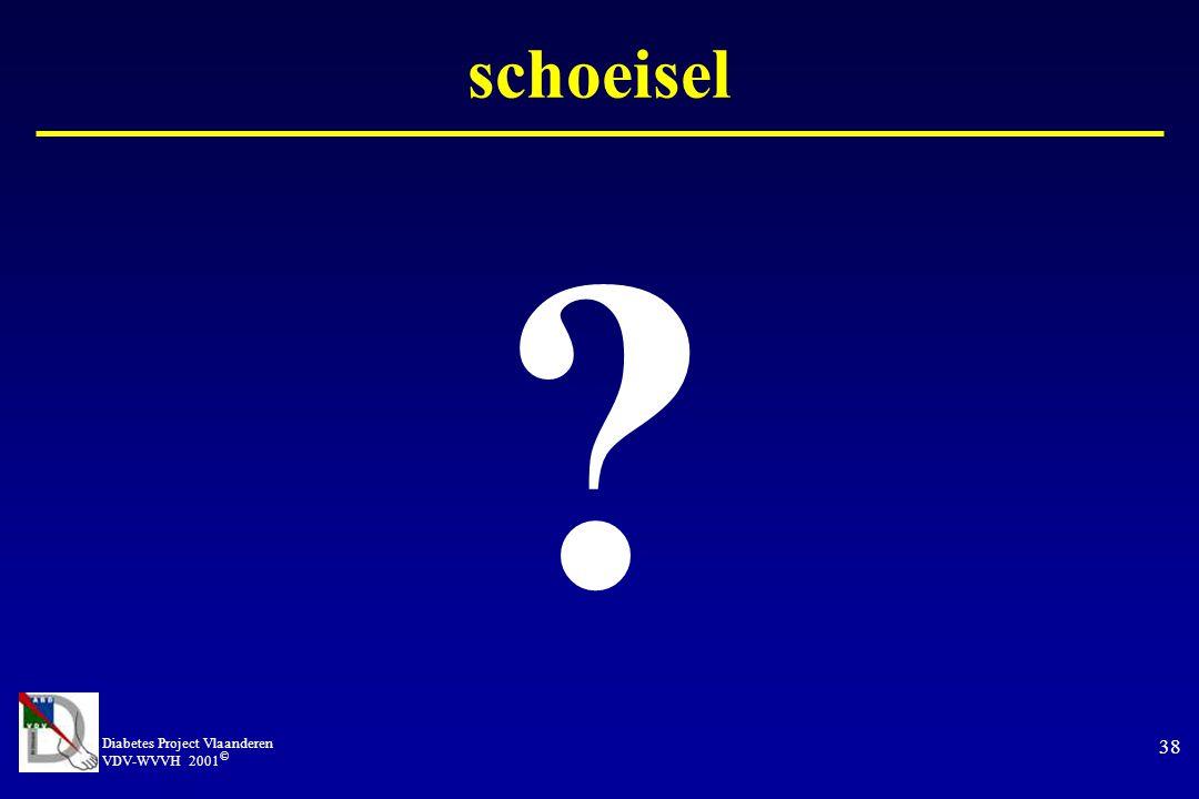 Diabetes Project Vlaanderen VDV-WVVH 2001 © 38 schoeisel ?