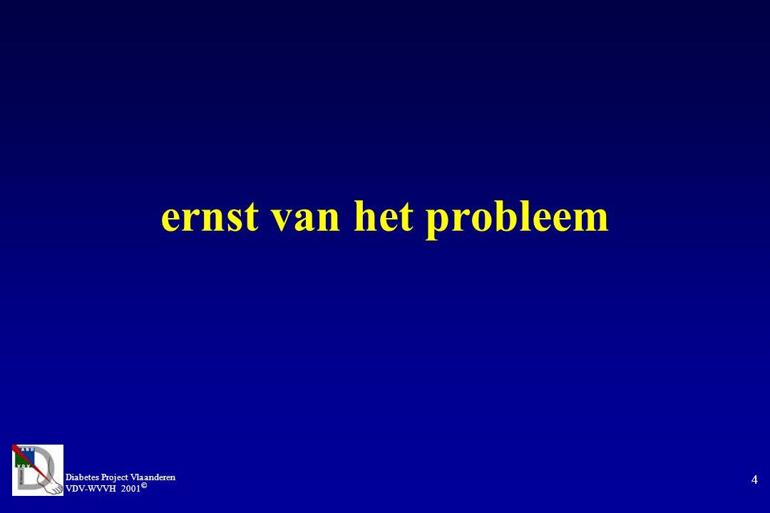 Diabetes Project Vlaanderen VDV-WVVH 2001 © 4 ernst van het probleem