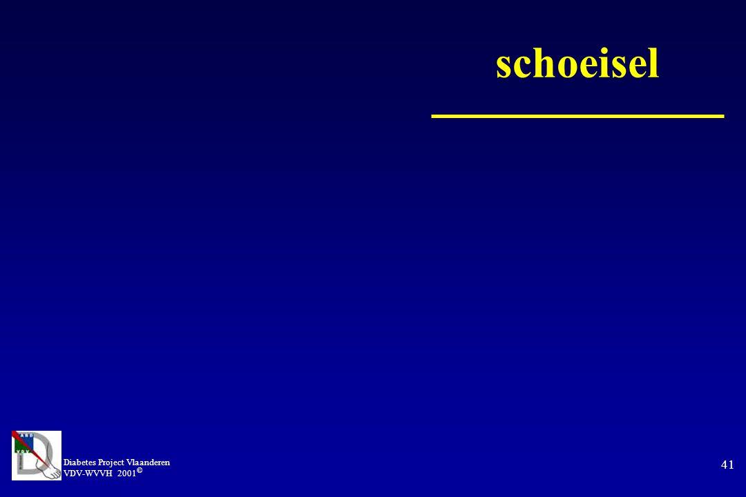 Diabetes Project Vlaanderen VDV-WVVH 2001 © 41 schoeisel