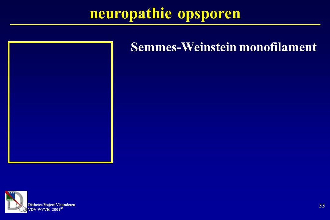 Diabetes Project Vlaanderen VDV-WVVH 2001 © 55 neuropathie opsporen Semmes-Weinstein monofilament