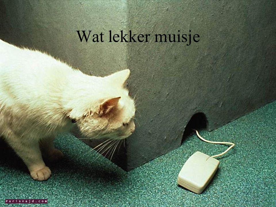 Wat lekker muisje