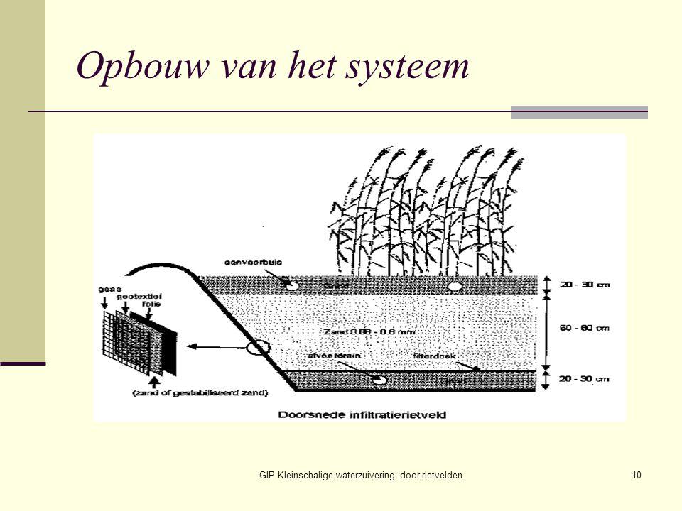 GIP Kleinschalige waterzuivering door rietvelden10 Opbouw van het systeem