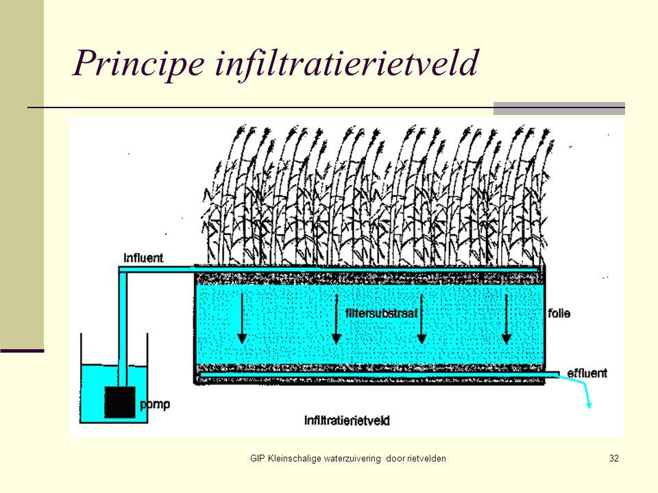 GIP Kleinschalige waterzuivering door rietvelden32 Principe infiltratierietveld