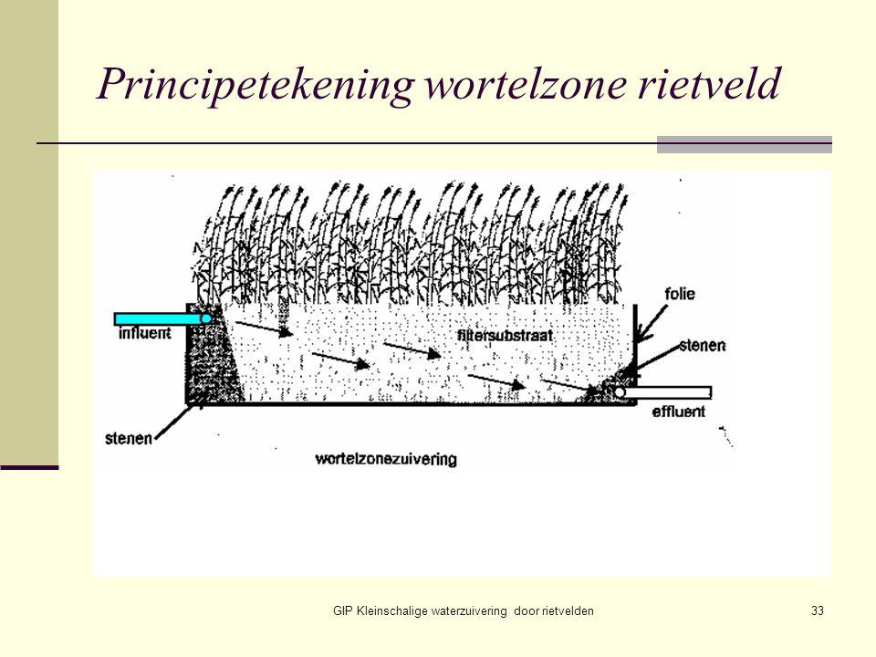 GIP Kleinschalige waterzuivering door rietvelden33 Principetekening wortelzone rietveld