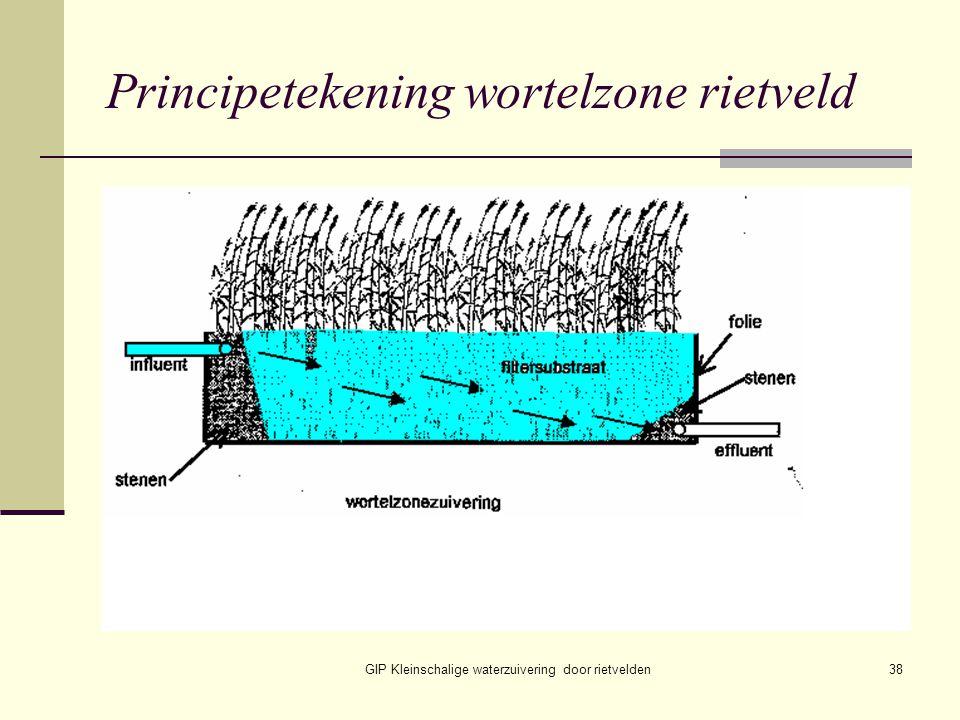 GIP Kleinschalige waterzuivering door rietvelden38 Principetekening wortelzone rietveld