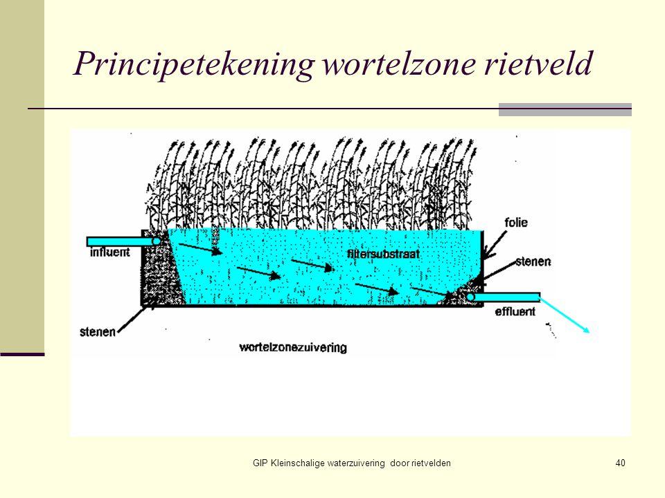 GIP Kleinschalige waterzuivering door rietvelden40 Principetekening wortelzone rietveld