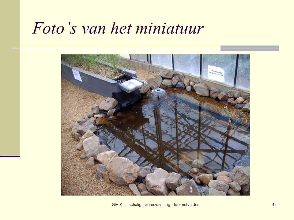 GIP Kleinschalige waterzuivering door rietvelden48 Foto's van het miniatuur