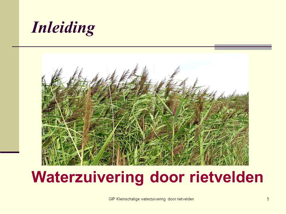 GIP Kleinschalige waterzuivering door rietvelden5 Inleiding Waterzuivering door rietvelden