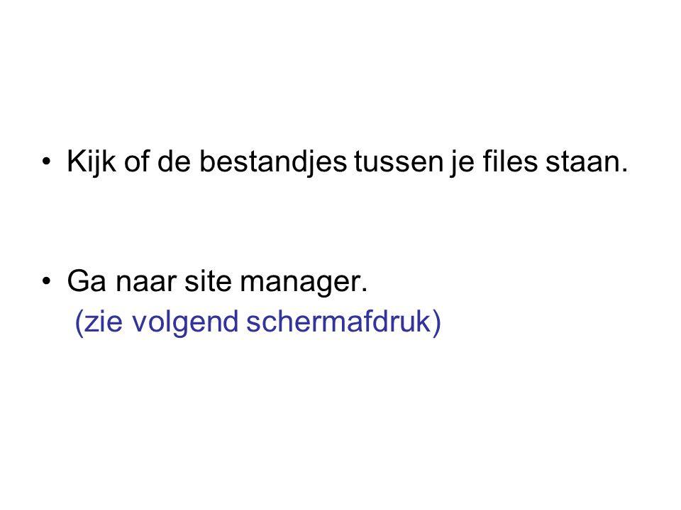 Kijk of de bestandjes tussen je files staan. Ga naar site manager. (zie volgend schermafdruk)
