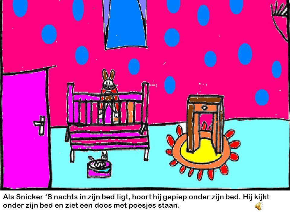 Als Snicker 'S nachts in zijn bed ligt, hoort hij gepiep onder zijn bed.