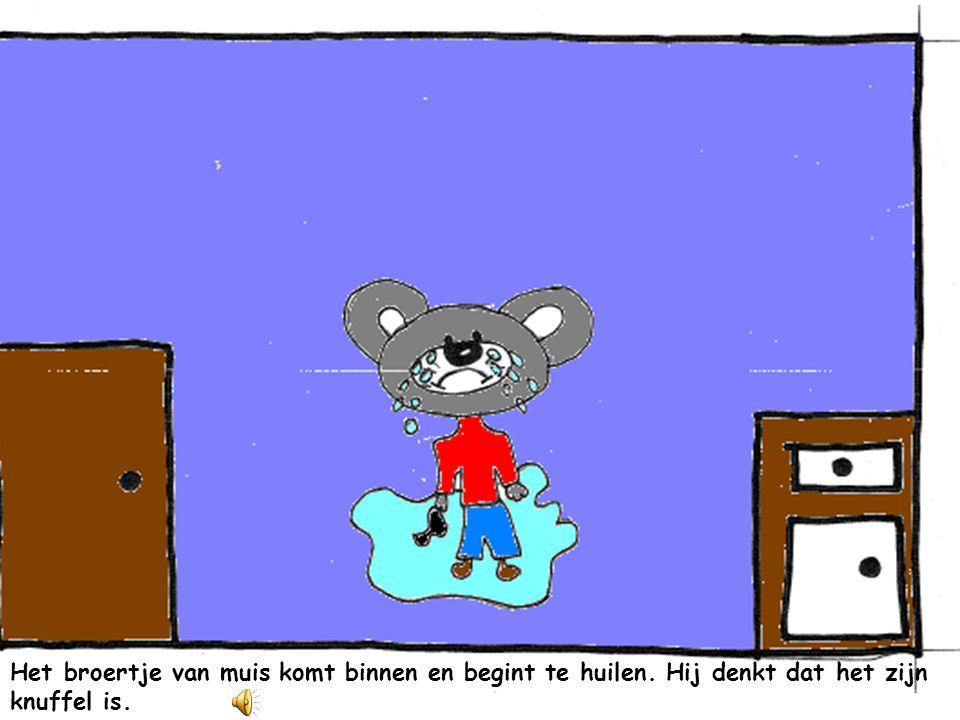 Muis ziet de knuffel van beertje