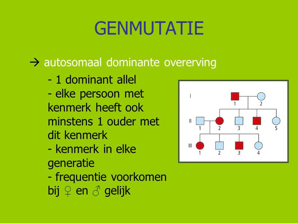 GENMUTATIE  autosomaal dominante overerving - 1 dominant allel - elke persoon met kenmerk heeft ook minstens 1 ouder met dit kenmerk - kenmerk in elk