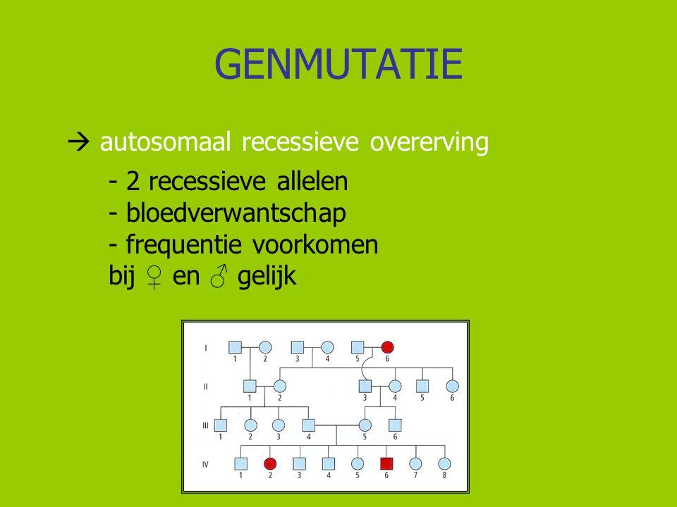 GENMUTATIE  autosomaal recessieve overerving - 2 recessieve allelen - bloedverwantschap - frequentie voorkomen bij ♀ en ♂ gelijk