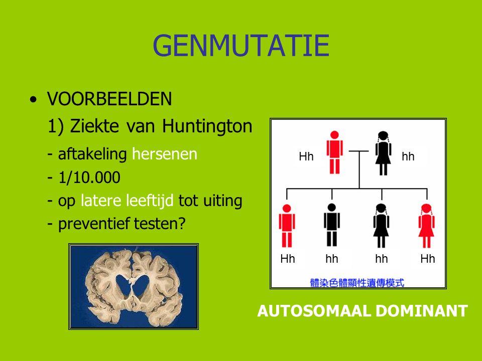 GENMUTATIE VOORBEELDEN 1) Ziekte van Huntington - aftakeling hersenen - 1/10.000 - op latere leeftijd tot uiting - preventief testen? AUTOSOMAAL DOMIN
