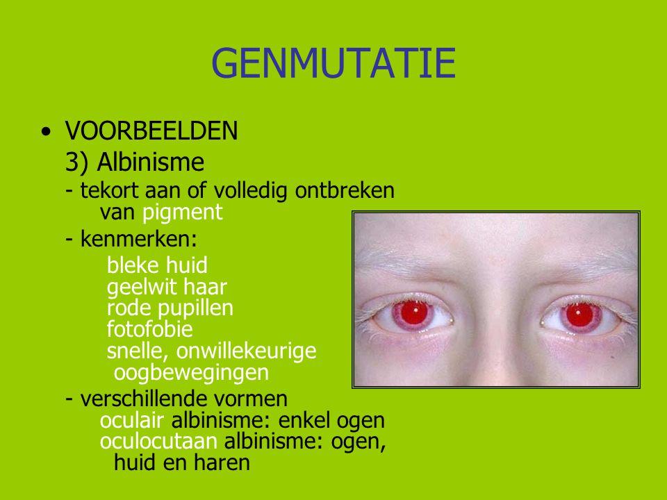 GENMUTATIE VOORBEELDEN 3) Albinisme - tekort aan of volledig ontbreken van pigment - kenmerken: bleke huid geelwit haar rode pupillen fotofobie snelle
