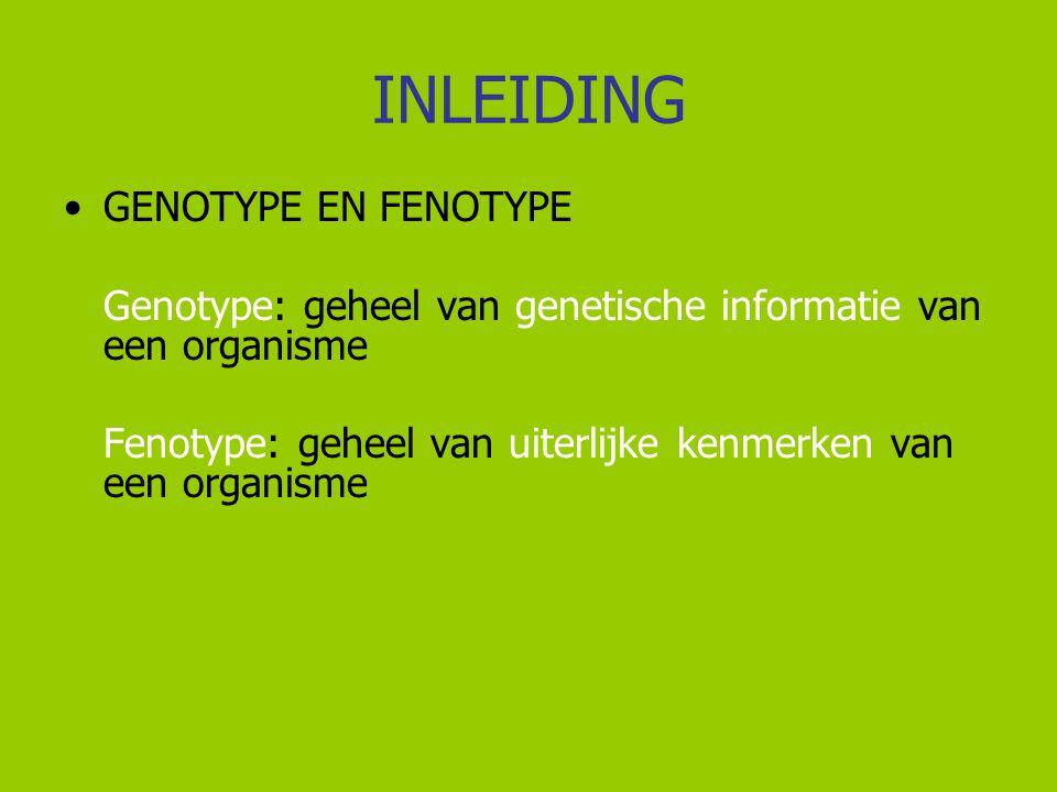INLEIDING Fenotype wordt bepaald door:  genotype  milieu, omgeving, omstandigheden  combinatie van genen en milieu  tijd  toeval  DUS: fenotype is altijd het resultaat van een wisselwerking tussen het genotype en de milieufactoren en eventueel tijd en toeval die erop inwerken