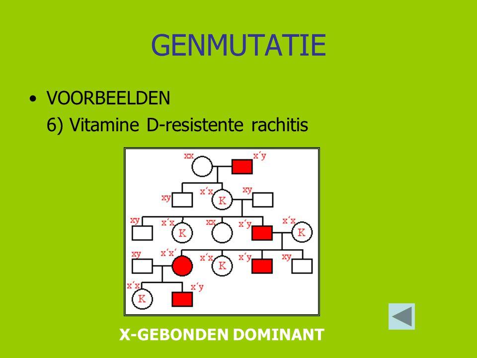 GENMUTATIE VOORBEELDEN 6) Vitamine D-resistente rachitis X-GEBONDEN DOMINANT