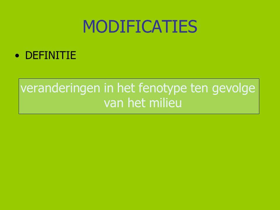 MODIFICATIES VOORBEELDEN 1) Paardebloem