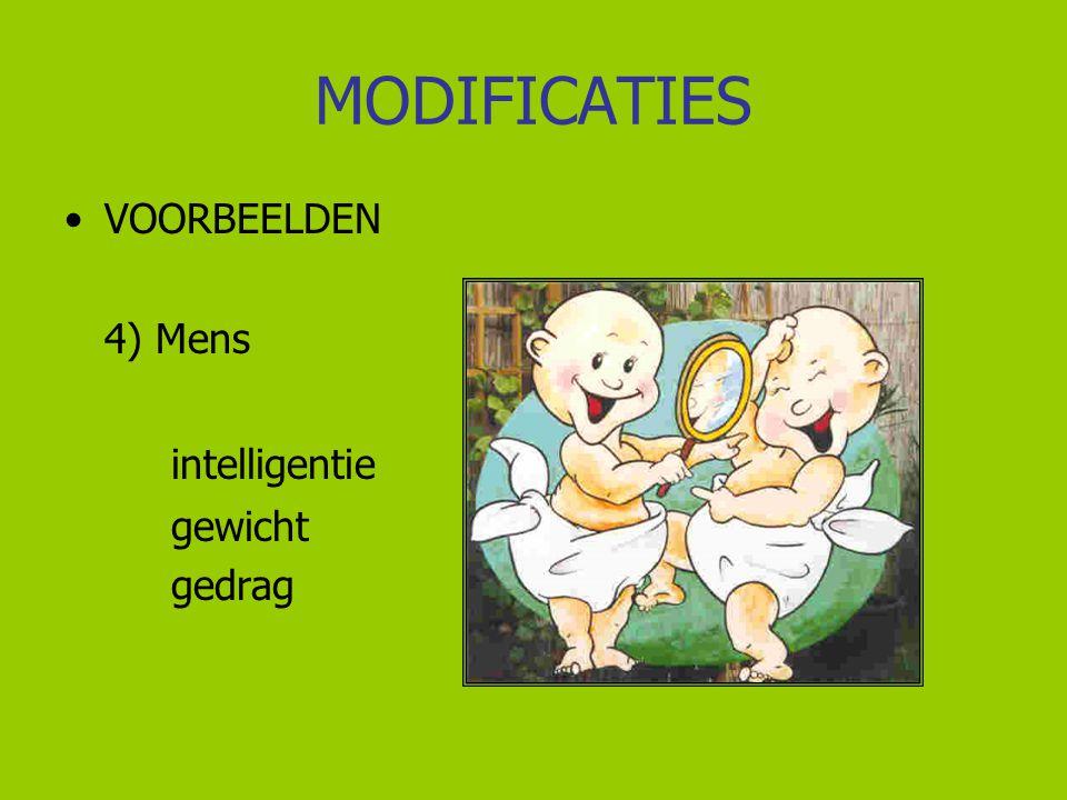 MODIFICATIES VOORBEELDEN 4) Mens intelligentie gewicht gedrag