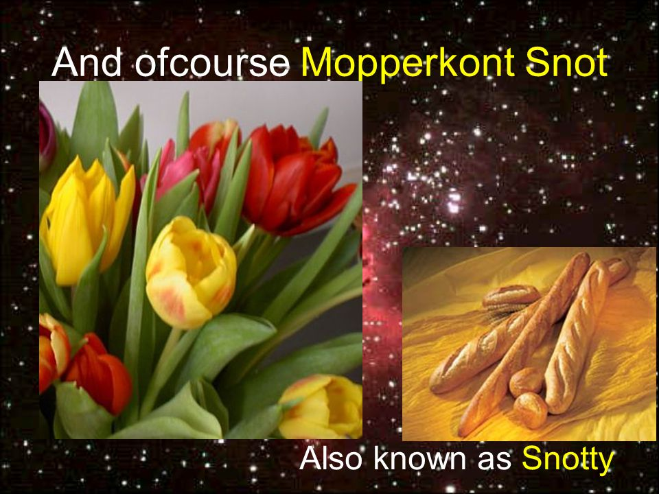 And ofcourse Mopperkont Snot Also known as Snotty