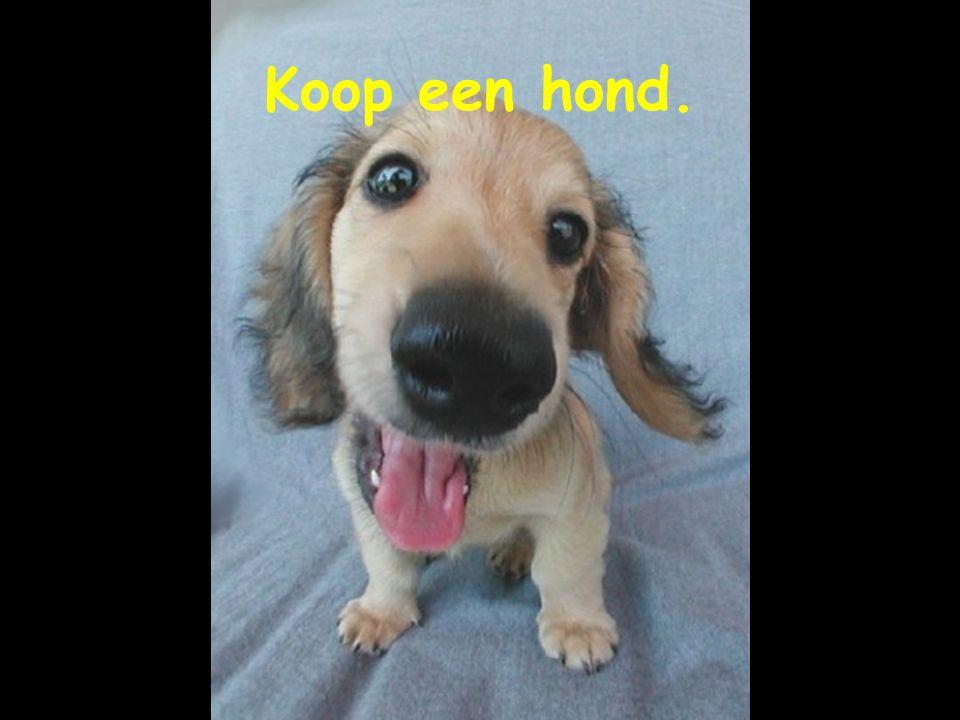 Gifanimatie.nl.tt