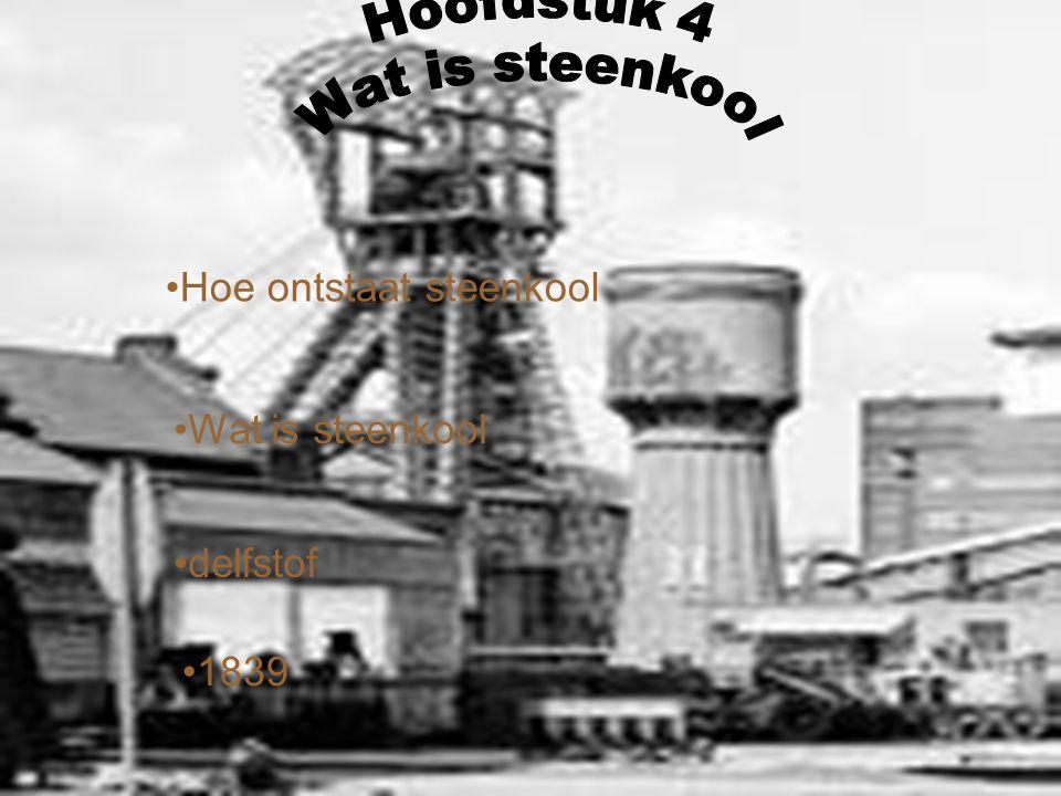 Hoe ontstaat steenkool delfstof Wat is steenkool 1839