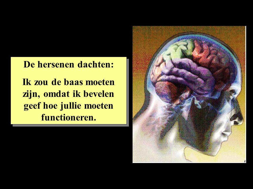 De hersenen dachten: Ik zou de baas moeten zijn, omdat ik bevelen geef hoe jullie moeten functioneren. De hersenen dachten: Ik zou de baas moeten zijn