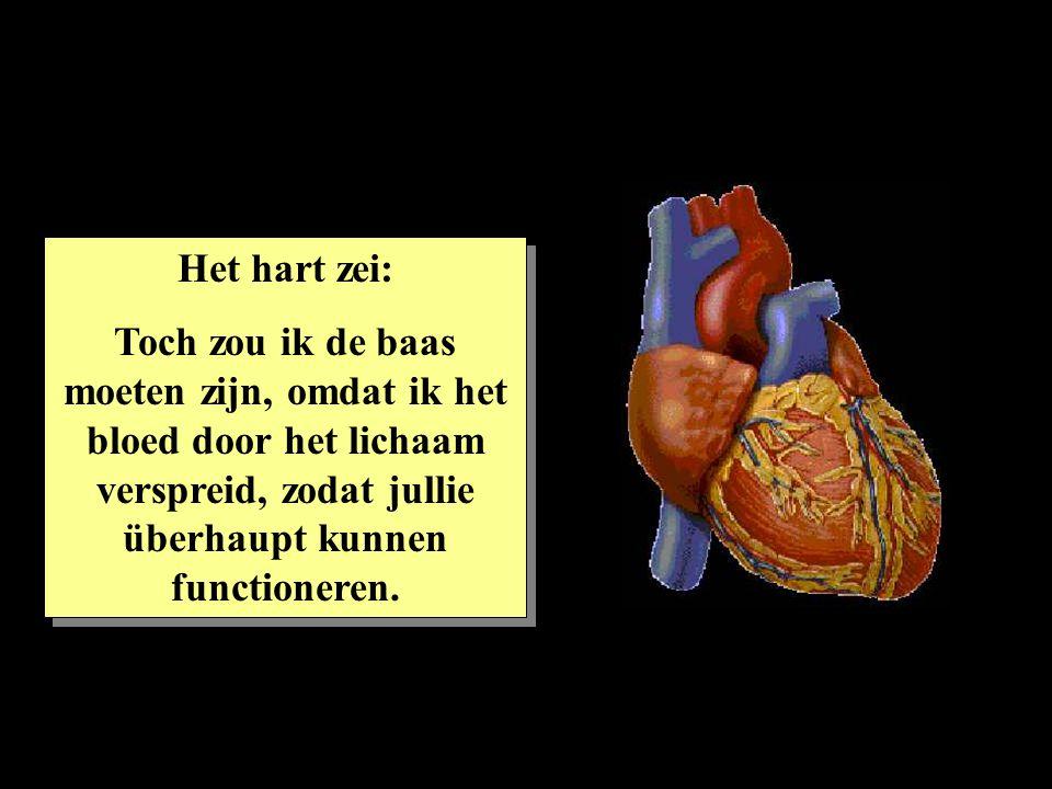 Het hart zei: Toch zou ik de baas moeten zijn, omdat ik het bloed door het lichaam verspreid, zodat jullie überhaupt kunnen functioneren. Het hart zei