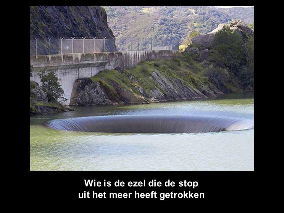 Wie is de ezel die de stop uit het meer heeft getrokken