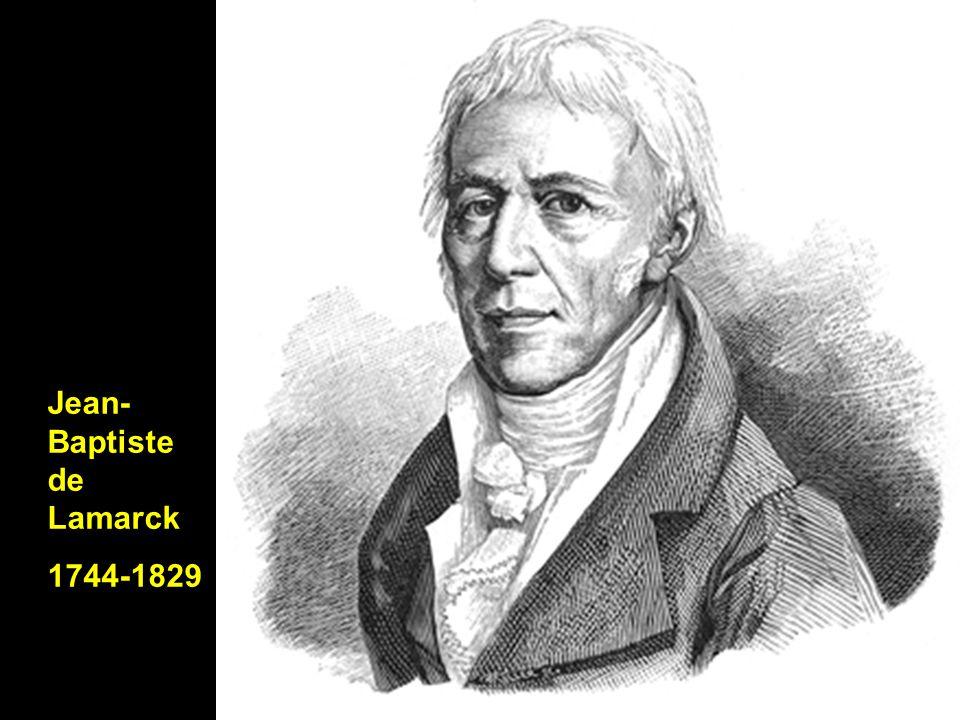 Jean- Baptiste de Lamarck 1744-1829
