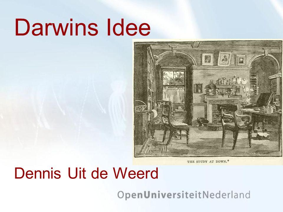 Darwins Idee Dennis Uit de Weerd