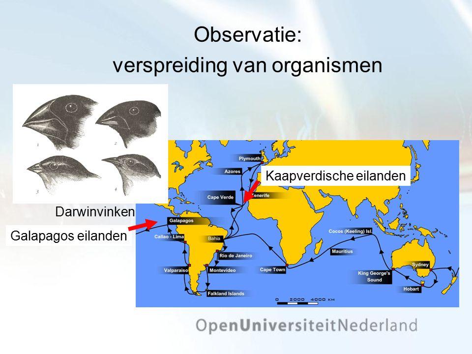 Observatie: verspreiding van organismen Darwinvinken Kaapverdische eilanden Galapagos eilanden