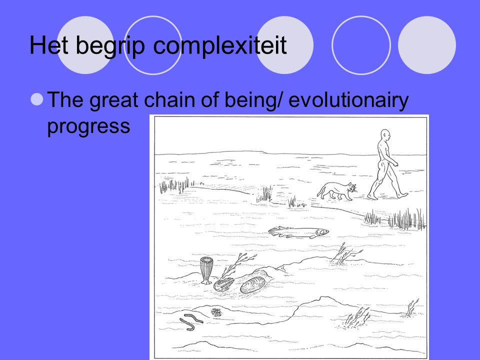 Het begrip complexiteit The great chain of being/ evolutionairy progress