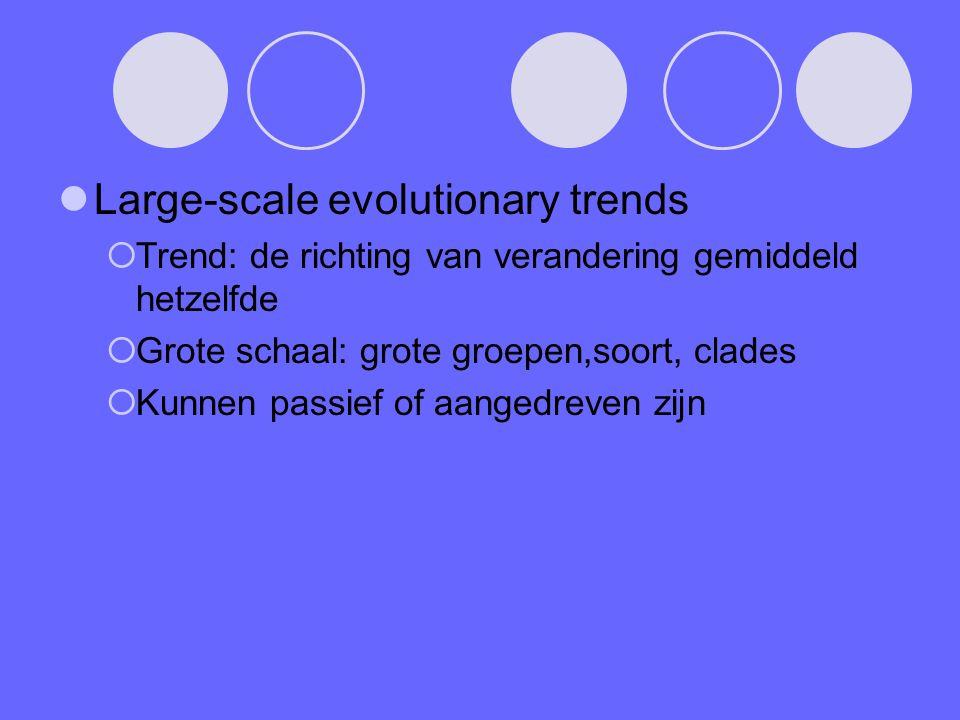  Trend: de richting van verandering gemiddeld hetzelfde  Grote schaal: grote groepen,soort, clades  Kunnen passief of aangedreven zijn