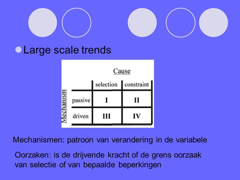 Large scale trends Mechanismen: patroon van verandering in de variabele Oorzaken: is de drijvende kracht of de grens oorzaak van selectie of van bepaalde beperkingen