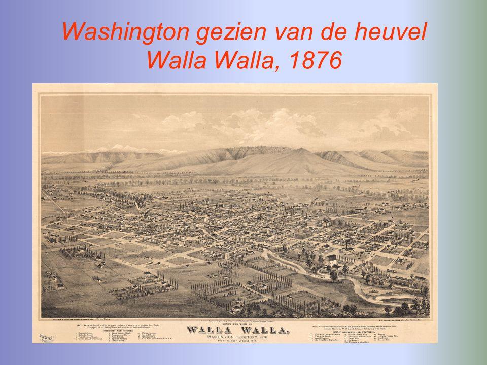 Washington gezien van de heuvel Walla Walla, 1876
