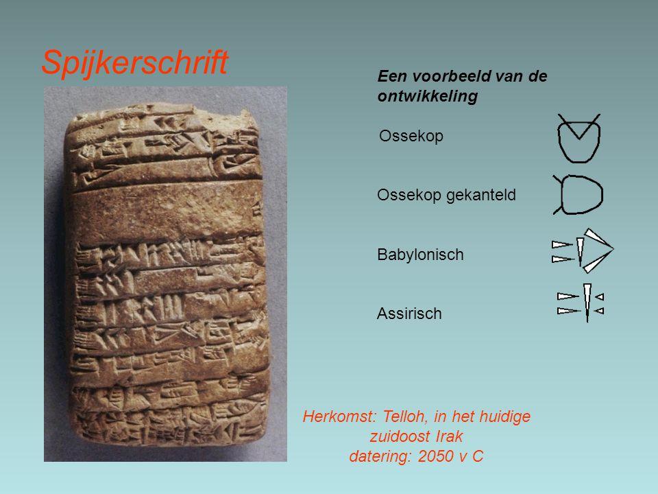 Spijkerschrift Een voorbeeld van de ontwikkeling Ossekop Ossekop gekanteld Babylonisch Assirisch Herkomst: Telloh, in het huidige zuidoost Irak datering: 2050 v C