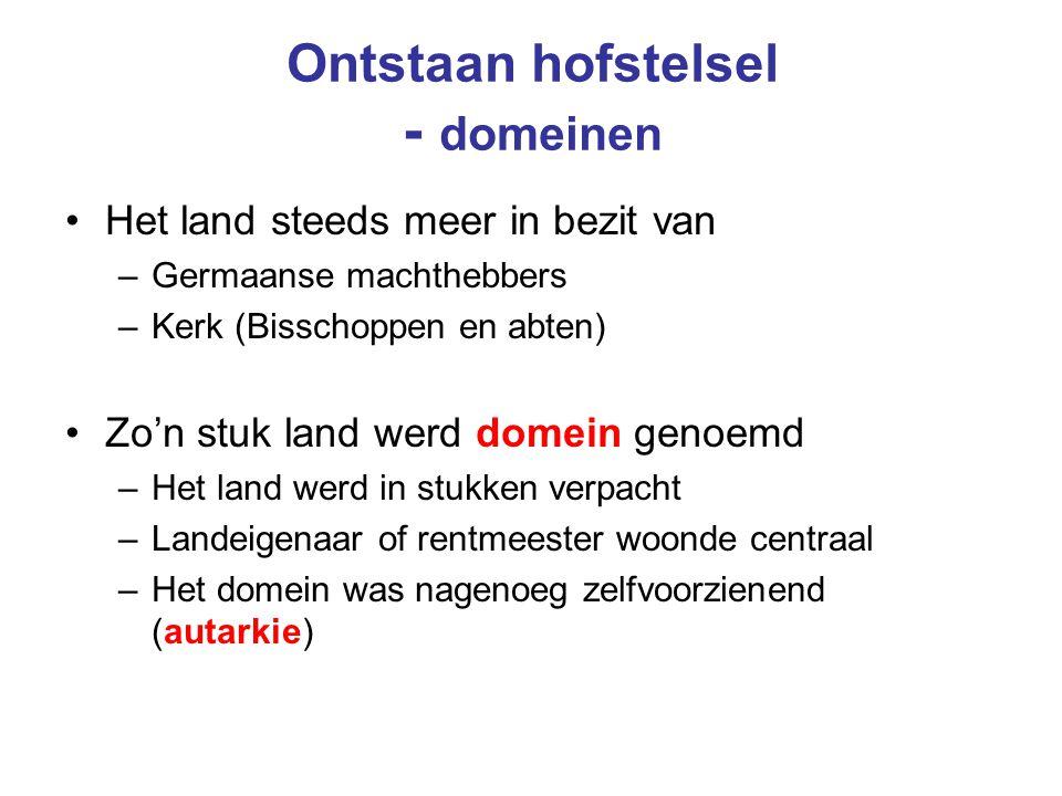 Ontstaan hofstelsel - domeinen Het land steeds meer in bezit van –Germaanse machthebbers –Kerk (Bisschoppen en abten) Zo'n stuk land werd domein genoe