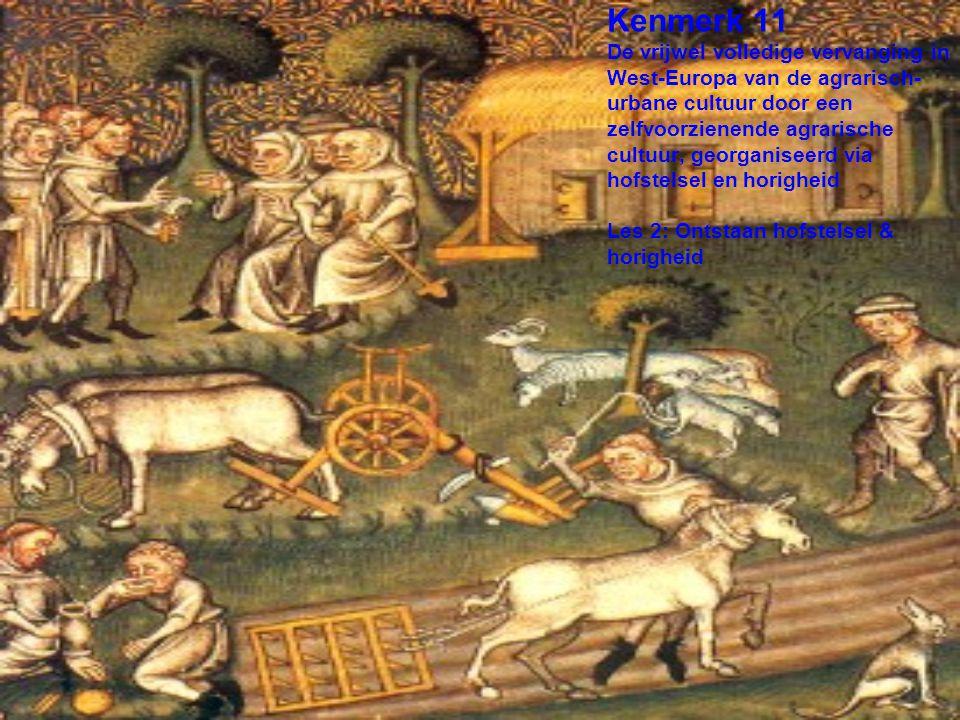 Kenmerk 11 De vrijwel volledige vervanging in West-Europa van de agrarisch- urbane cultuur door een zelfvoorzienende agrarische cultuur, georganiseerd via hofstelsel en horigheid Les 2: Ontstaan hofstelsel & horigheid