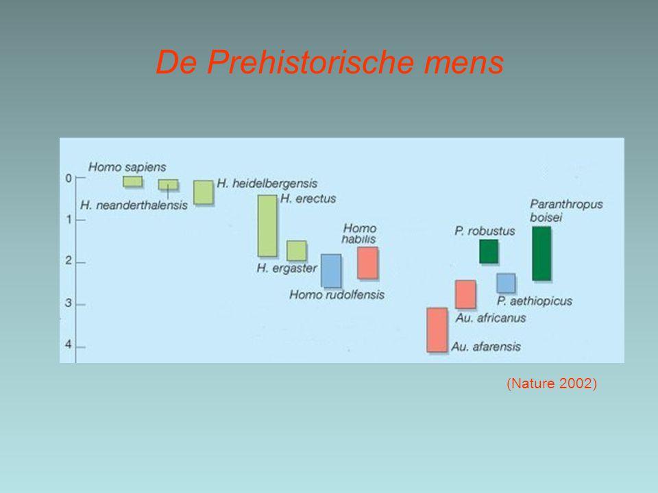 De Prehistorische mens (Nature 2002)