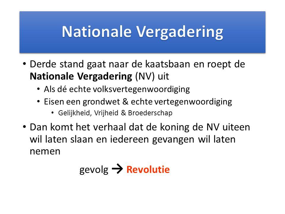 Derde stand gaat naar de kaatsbaan en roept de Nationale Vergadering (NV) uit Als dé echte volksvertegenwoordiging Eisen een grondwet & echte vertegen